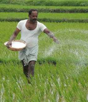 Farmers can buy fertilizers at old prices Union Minister