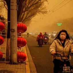 BEIJING TURNS YELLOW