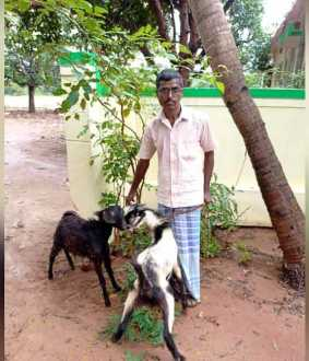 Goat stolen owner filed complaint in police station