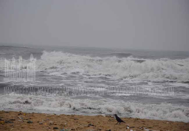 nivar cyclone meteorological department rains peoples