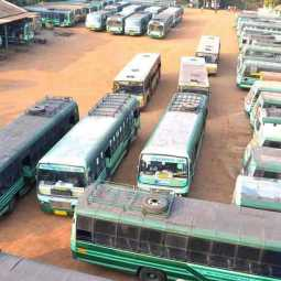 Special camp to renew government bus driver's license!