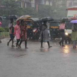 Chance of heavy rain in 5 districts!