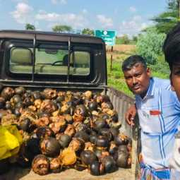Ariyalur District Volunteers Donate Palm Seeds to Cuddalore District