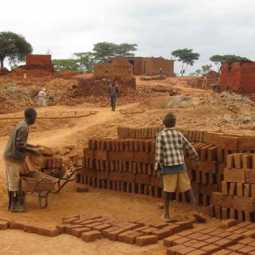 Government of Tamil Nadu ordered to remove brick kilns on elephant route without delay !!