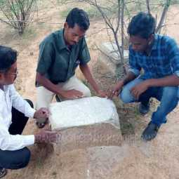 Rare inscription first discovered in Madurai!