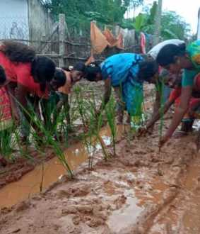 ariyalur road improper condition