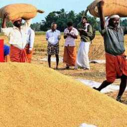 Purchase of paddy at new prices from tomorrow - Minister Kamaraj