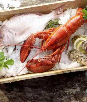 corona virus found in frozen sea food at china