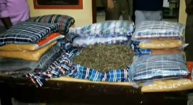 cannabis inside the pillow....  sale to whole North chennai is exposed