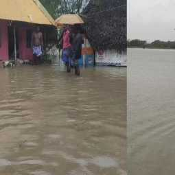nagai district heavy rains farmers land peoples government