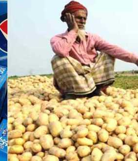 pepsi filed case against farmers for cultivating potato