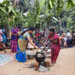 pongal celebrations by alumini in government school