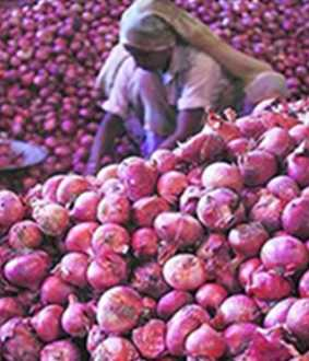 onion-price reduced in Koyambedu