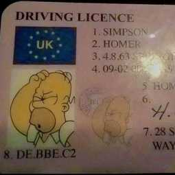 license cartoon