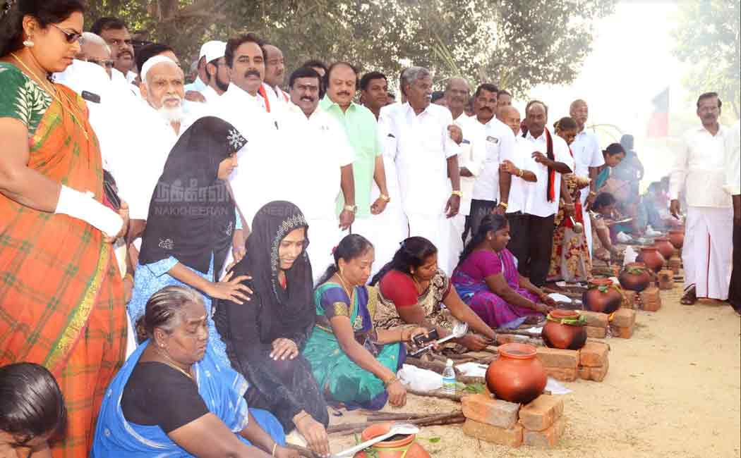 farmers pongal celebrations