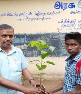 dindigul govt school teacher trees donated have in students