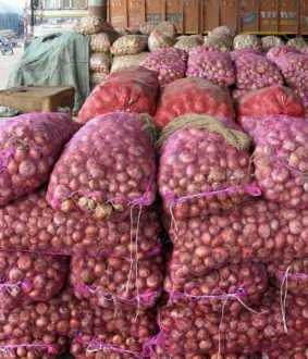 2000 tons of onions stored in Perambalur ... 4 sued!