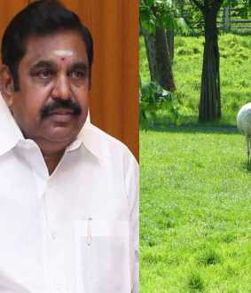 Animal shelter at Salem in 396 crores- eps