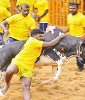 jallikattur in salem district police peoples