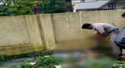 A four-and-a-half-year-old child was murdered in water reservoir !! Police investigation