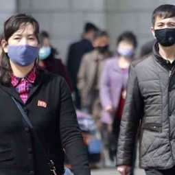 north koreas new law to punish people not wearing mask