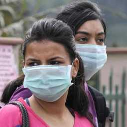 dengue and swine flu in india