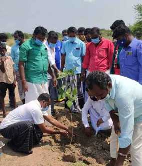 Youngsters who paid homage to the wisdom of planting saplings Thambiramaya who greeted