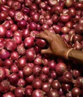 onion storage union government announced 2 tons only