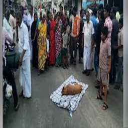 karur district dog died people crying police arrested in municipality employees
