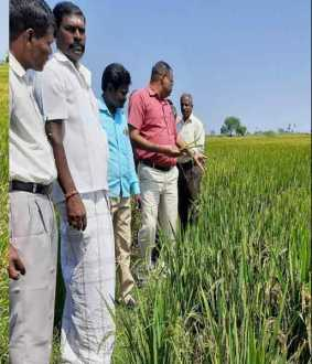 Echo of Nakkeeran's message; Farmers thanking Nakkeeran