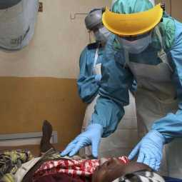 lassa fever costs 29 lives in nigeria