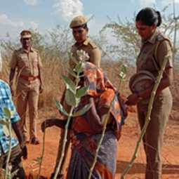 Theni andipatti female child incident - mother grandmother arrested