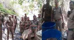 For 20 years the illicit liquor... Uncovered Police... Forest Department action