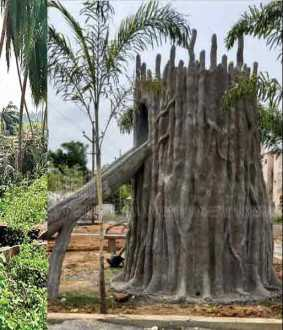 Municipality making cement trees to destroy natural trees!