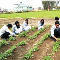 Agricultural courses suitable for all seasons