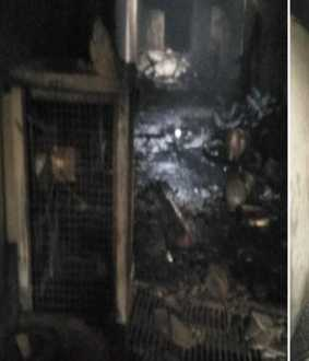 Death toll rises to 43 in Delhi fire incident