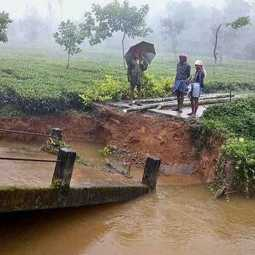 nilgiris districts heavy rain flood