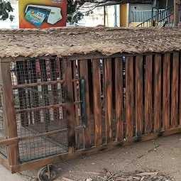 new animal cages making forest officers in erode