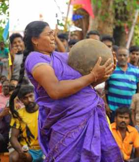 pongal sports and celebrations in thirunelveli