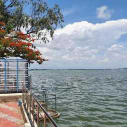 Veeranam Lake is full ... Farmers and the public are happy!