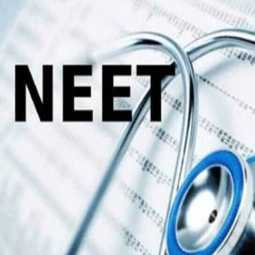 neet exam chennai high court ask questions