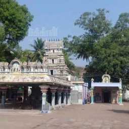 bomb threat for a temple in dindigul