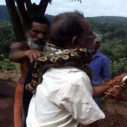 A man was rescued from a python by locals after the snake IN  Thiruvananthapuram, today.