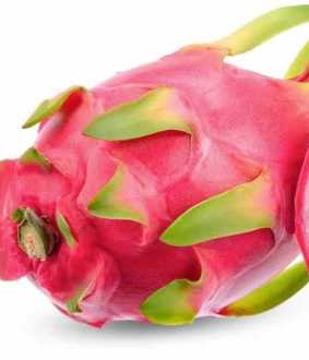 gujarat government renames dragon fruit as kamalam
