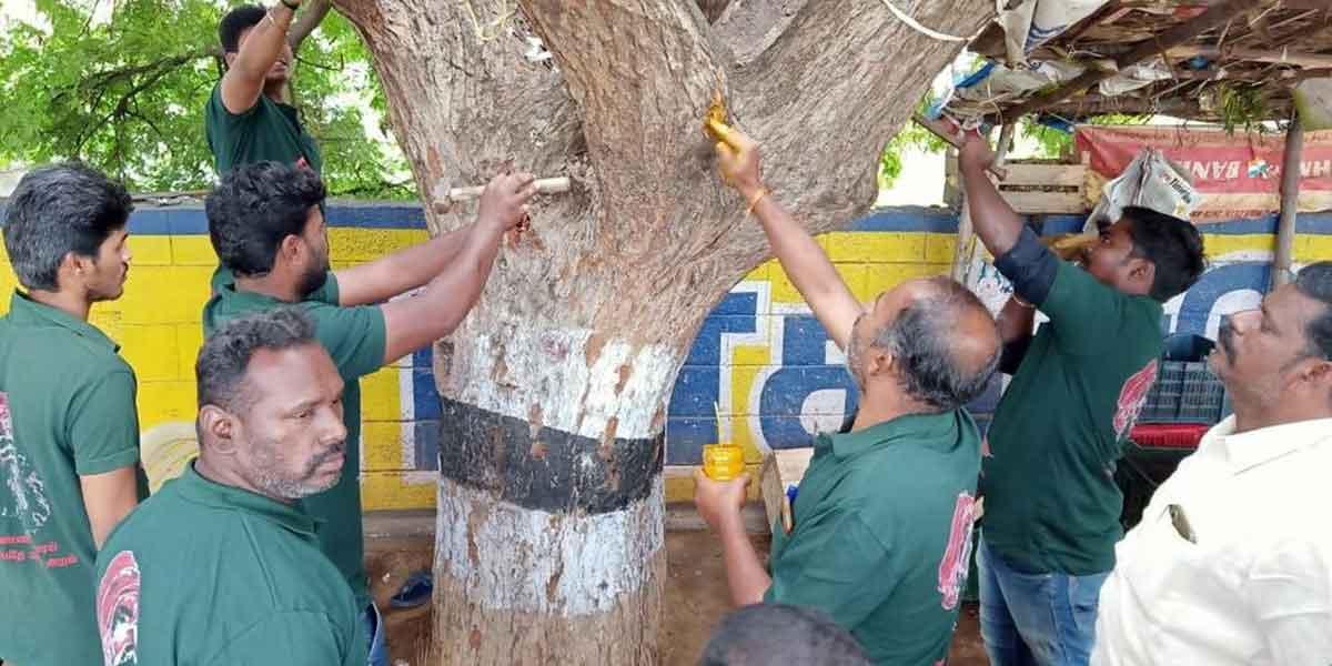 Nail Picking Festival theni
