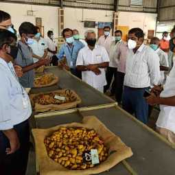 turmeric sales started - erode -