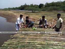Young people who built the Bamboo Bridge in the river!