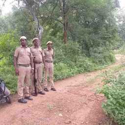vellore forest area leopard peoples shock