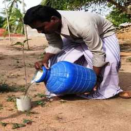 A farmer who pipes water to the roots of a tree.  Water is a necessity, a demand