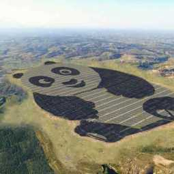china build panda shaped solar farm